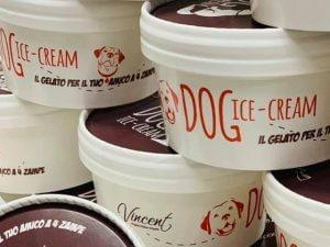 Un gelato per cani? Esiste ed è già in vendita: è il Dog Ice Cream