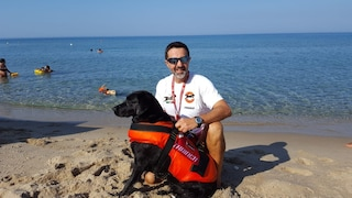 Palinuro, cane si lancia in mare e salva un 16enne che stava annegando