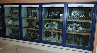 Afragola, furto in gioielleria: i ladri sfondano le vetrine e rubano preziosi e orologi