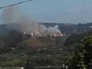 Incendio vicino al Pendio di Agnano, foto Facebook – Oasi WWF