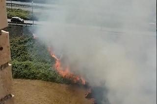 Incendio di sterpaglie Scampia, la colonna di fumo tra la Perimetrale e il campo rom