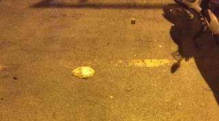 Buste di pipì abbandonate nell'area del mercato di Castellammare di Stabia