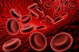 A Napoli scoperto un nuovo tipo di emoglobina: curerà una bimba affetta da anemia