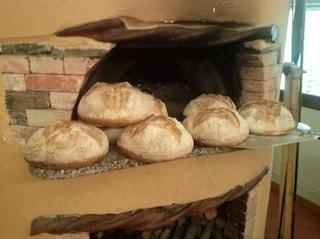 Due quintali di pane sequestrati dai carabinieri a Napoli