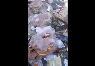 Che spreco a Napoli: al Vomero quintali di pane, frutta e verdura gettati nell'immondizia