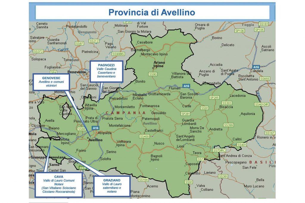 La mappa dei clan di Camorra operanti ad Avellino e provincia secondo il II Rapporto Semestrale della Direzione Investigativa Antimafia.
