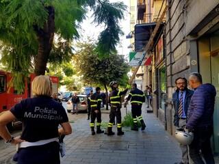 Napoli, cade un ramo sul corso Secondigliano: ferita una donna, tre punti di sutura