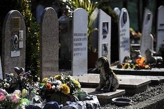 Caserta: scoperti cimiteri per animali abusivi, sequestrati due terreni