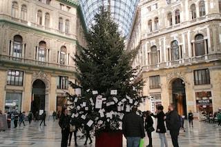 """""""Rubato l'albero di Natale in Galleria Umberto"""": ma è una bufala"""