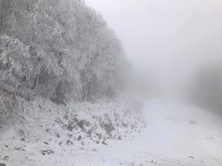 Meteo, prima neve in Campania: lo spettacolo bianco del Lago Laceno