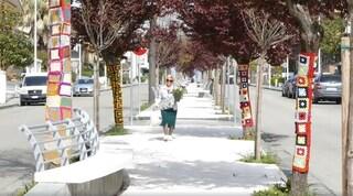 I ricami all'uncinetto delle nonne trasformano il viale degli alberi in un arcobaleno