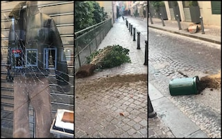 Notte di vandali a Chiaia: vetrine sfondate, panchine rotte, vasi e piante distrutti