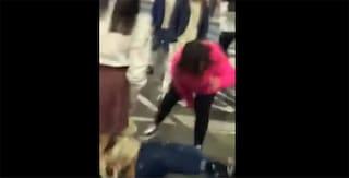 Casoria, rissa al centro commerciale, video: branco di ragazze accerchia e picchia coetanea