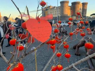 Coronavirus, flash mob a Napoli a sostegno dei cinesi: un albero pieno di cuori in piazza Municipio
