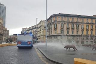 2 idranti della Polizia usati per sanificare le strade di Napoli