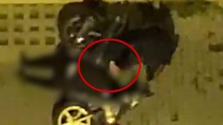 Ugo Russo ucciso da carabiniere a 15 anni: c'è un video degli attimi successivi alla sparatoria