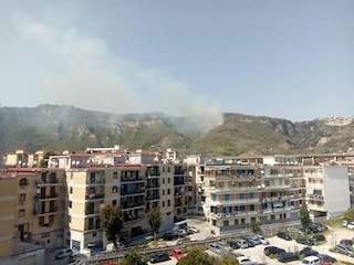 Incendio sulla collina dei Camaldoli, sul posto i vigili del fuoco