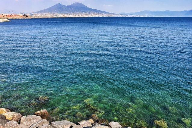 A un mese dall'inizio della quarantena il mare di Napoli è rinato: fondali trasparenti e pesci