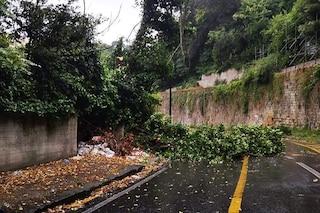 Maltempo Napoli, chiusa via Masoni per frana e crollo alberi. Allagamenti a Gianturco e Bagnoli