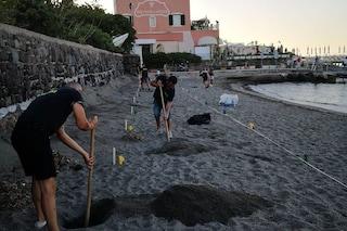Il Daspo di Ischia: chi non rispetta le distanze in spiaggia non potrà più andare a mare