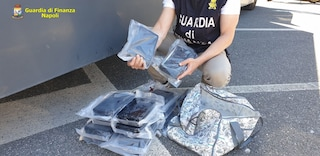 La cocaina purissima arriva a Napoli dall'Olanda: sequestrati 17 chili