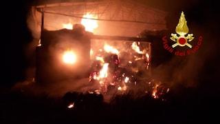 Montecalvo Irpino, incendio in un capannone: fiamme alte e densa colonna di fumo nero