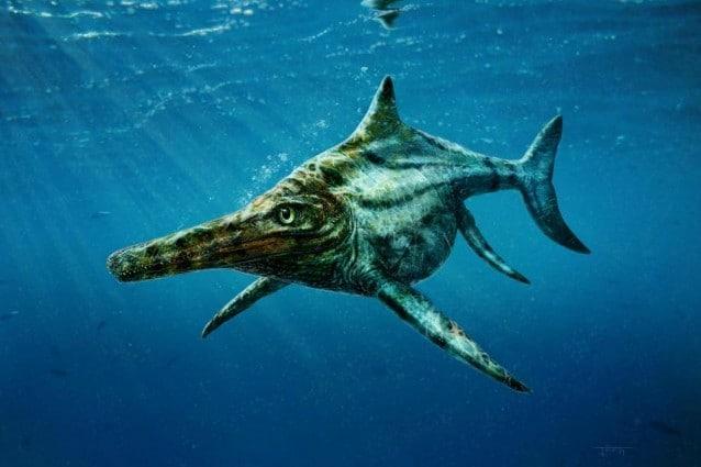 Rappresentazione artistica dell'ittiosauro recentemente scoperto dagli esperti dell'università di Edimburgo