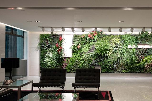 Un muro di piante in un ufficio di Hong Kong.