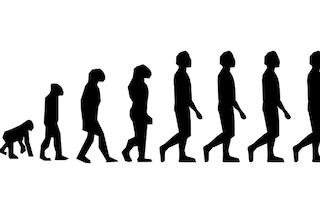 Perché camminiamo su due gambe? La nostra evoluzione forzata dall'esplosione di supernove