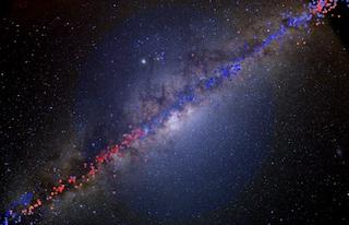 Gli animali notturni usano le stelle e la Via Lattea per trovare la strada verso casa