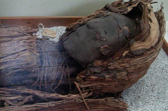 """Una delle mummie Chinchorro più """"recenti"""" (foto di Pablo Trincado via wikipedia)"""