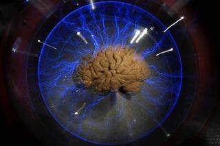 Sinapsi artificiali, per la prima volta i neuroni si 'parlano' con una protesi elettronica
