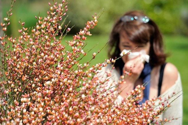 Allergie stagionali ai pollini curate con l'alimentazione
