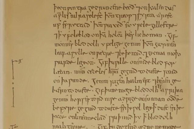 Copia di una pagina del Medicinale Anglicum
