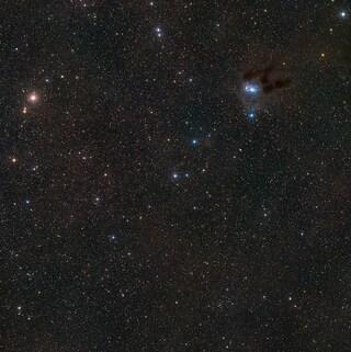 Molecole organiche nei giovani Sistemi Stellari
