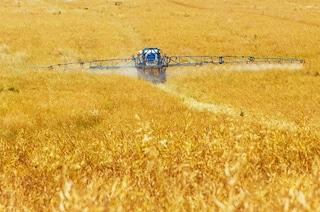 Il legame tra pesticidi e infertilità maschile