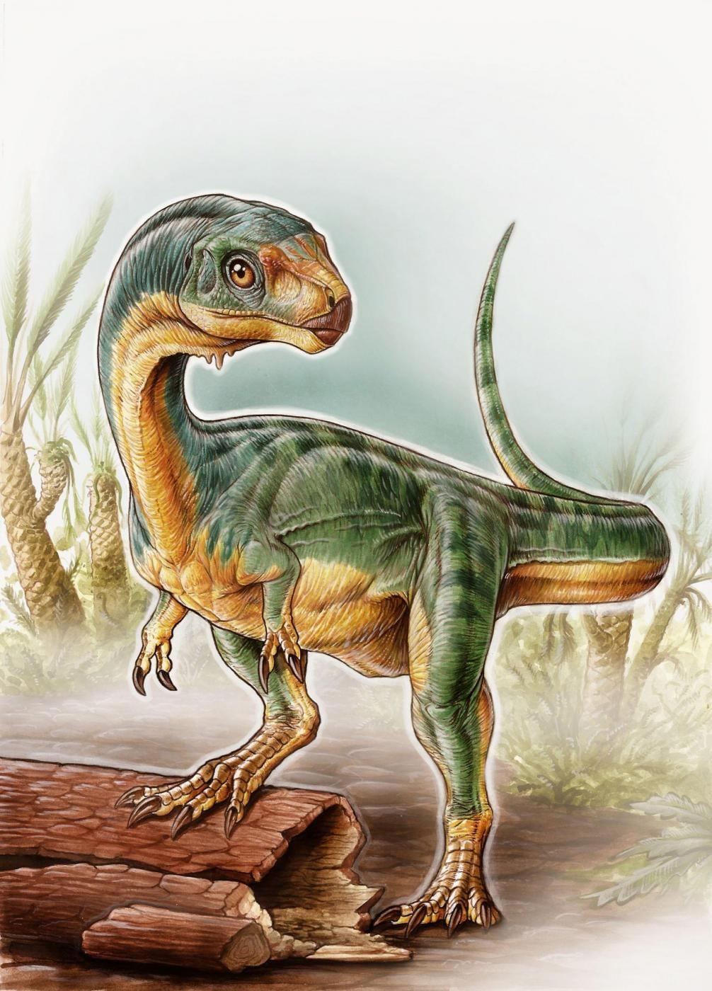 Rappresentazione artistica del cugino vegetariano del T. Rex