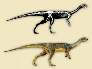 Un tirannosauro erbivoro