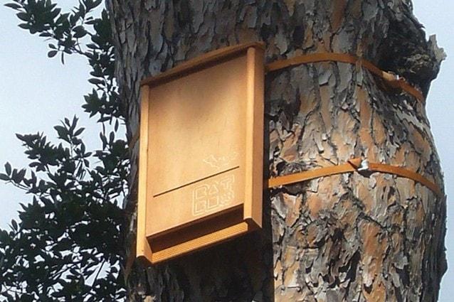 Un esempio di Bat Box