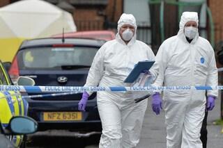 Identificato l'odore della morte per trovare cadaveri e carne scaduta