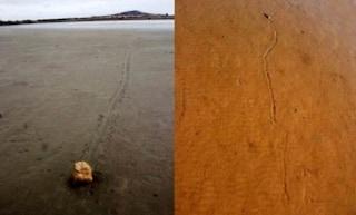 Come fanno pietre di 300 chilogrammi a spostarsi da sole?