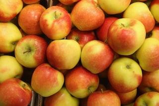 Greenpeace svela il cocktail di pesticidi nelle mele europee