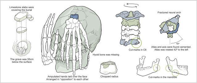 Illustrazione della disposizione dei resti (© 2015 Strauss et al. via PLOS ONE)