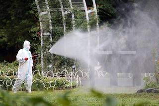 Siamo dipendenti dai pesticidi che stanno distruggendo la biodiversità
