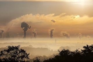 Cos'è la sesta estinzione di massa? La fine dell'uomo è vicina