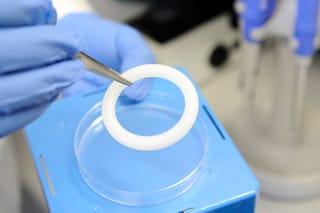 5 dollari è il costo dell'anello vaginale che protegge dall'HIV