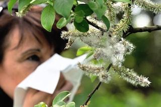 La stagione in cui siamo nati è responsabile delle nostre allergie?