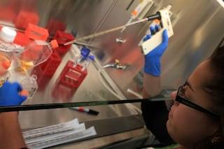 Il cerotto bionico che controlla lo stato di salute del cuore