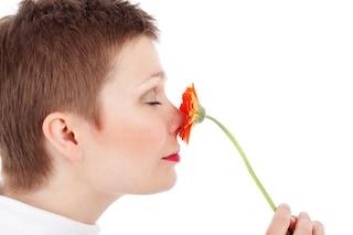 Ricerca italiana: l'invecchiamento passa anche dall'olfatto