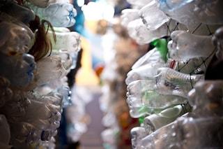 Scoperto il batterio 'ecologista' che distrugge e mangia la plastica